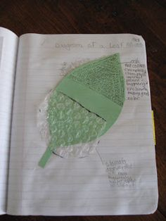 Science Notebooking: Interactive Cut Outs