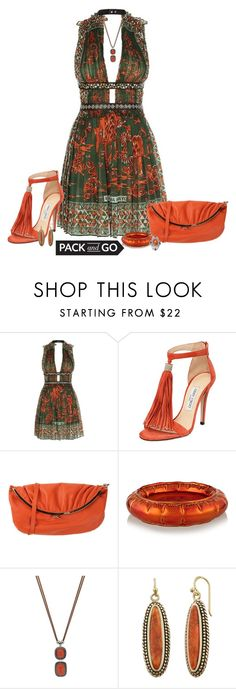 """""""A Night Out"""" by lwilkinson ❤ liked on Polyvore featuring Valentino, Jimmy Choo, RED Valentino, MM6 Maison Margiela and Packandgo"""