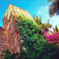 Historic ruins. Malaga, Spain