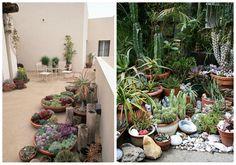 07-decorar-con-cactus-jardin