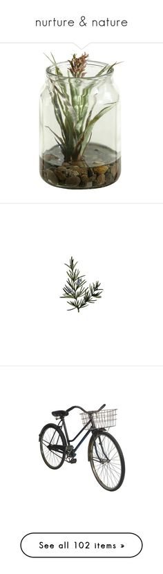 """""""nurture & nature"""" by freshyouth ❤ liked on Polyvore featuring home, home decor, floral decor, plants, fillers, flowers, nature, decor, backgrounds and text"""