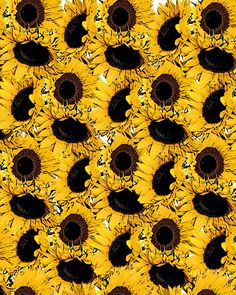 Flowers Background Laptop Yellow Ideas For 2019