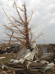 A shredded tree stands amid debris after a massive tornado touched down in the town of Moore, near Oklahoma City, Oklahoma May 20, 2013. A huge tornado with winds of up to 200 miles per hour (320 kph) tore through the Oklahoma City suburb of Moore on Monday, ripping up at least two schools and leaving a wake of tangled wreckage as a dangerous storm system threatened as many as 10 U.S. states