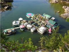 If there's no better way to live off the grid than to live on water, then this Canadian couple has been living the floating dream. Freedom Cove is their self-sustaining floating home complex in British Columbia. Wayne Adams and Catherine King Floating Architecture, Eco Architecture, Self Sustaining, Off Grid House, Floating Platform, Going Off The Grid, Floating House, Floating Island, Floating Garden