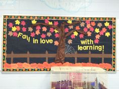 Fall bulletin board idea, made for back to school night the parents loved it!