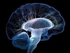 Как без медикаментов чистить сосуды головного мозга.