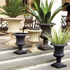 Extra Large Grecian Urn - traditional - outdoor planters - by Ballard Designs Front Yard Planters, Front Porch Plants, Urn Planters, Large Backyard Landscaping, Big Backyard, Backyard Ideas, Outdoor Planters, Outdoor Decor, Outdoor Living