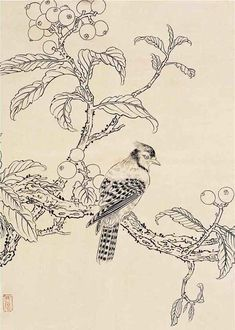 Yu Feian(于 非闇 Chinese, 1889-1959) Bird Coloring Pages, Bird Drawings, Japanese Painting, China Painting, Japanese Prints, Japan Art, Botanical Illustration, Chinese Art, Sketches