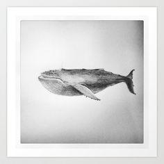 Whale Art Print by Shannon Sadler - $16.64