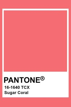 Pantone Tcx, Pantone Swatches, Pantone 2020, Color Swatches, Pantone Color Chart, Pantone Colour Palettes, Flat Color Palette, Colour Pallette, Pastel Red
