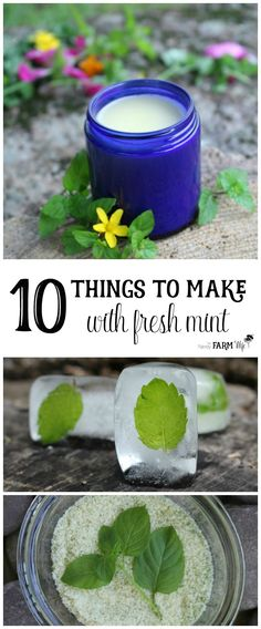 Mint is an easy to grow herb that cools and relieves pain. It can help ease stomachache, indigestion, headache, nausea and sore muscles. Today, I'm sharing ten ways that you can use up an abundance of mint to make things that are both fun and practical. Natural Home Remedies, Natural Healing, Herbal Remedies, Health Remedies, Cold Remedies, Bloating Remedies, Holistic Healing, Diy Cosmetic, Cooking With Turmeric