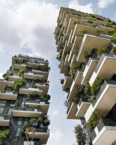 Internationaler Hochhaus Preis 2014 geht an begrünte Wohnhochhäuser Bosco Verticale
