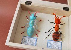 felt/soft sculpture ants by Hiné Mizushima Insect Crafts, Insect Art, Soft Sculpture, Sculptures, Wooly Bully, Beaded Spiders, 3d Figures, Bug Art, Craft Day