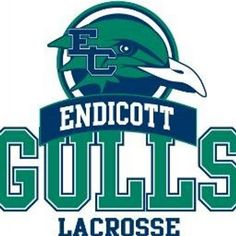 Gulls, Endicott College (Beverly, Massachusetts) Div III, The Commonwealth Coast Conference #Gulls #BeverlyMassachusetts #NCAA (L9732)