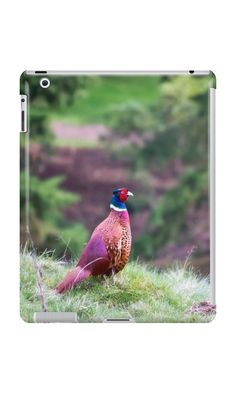 'Ring-necked Pheasant' iPad Case/Skin by Vicki Field