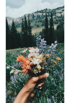 Quotes about Missing : Bouquet de fleurs sauvages Flower Aesthetic, Aesthetic Drawing, Aesthetic Art, Aesthetic Makeup, Jolie Photo, Gardening For Beginners, Gardening Hacks, Container Gardening, Pretty Pictures