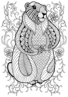 zentangle: Hand drawn artistic Marmot, Groundhog in flowers for adult coloring page A4 size in doodle, zentangle style, ethnic ornamental patterned print, monochrome sketch. Floral printable vector illustration.