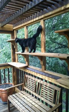 Here's something to add to the list of awesome things you can build for your cat: a catio. It's a portmanteau of cat + patio, and it's an enclosed outdoor space that lets your cat enjoy the great outdoors, without the attendant risks. If you've got the DIY itch, here a few inspiring projects to get you started. Your neighbors may look askance at your new outdoor room, but your cats will be happy, and that's what matters.