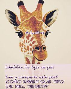 Tips Belleza, Giraffe, Animals, Instagram, Animales, Felt Giraffe, Animaux, Animal, Animais