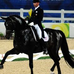 Ravel - Olympic Dressage Horse ridden by Steffen Peters of the US, received stem cell therapy for a leg injury