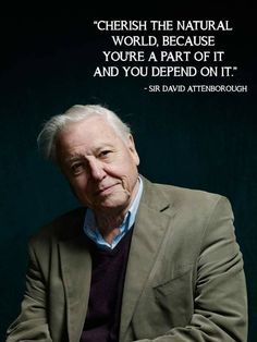 Sir David Attenborough, I love his charismatic voice and his extraordinary passion for the wild ❤️❤️