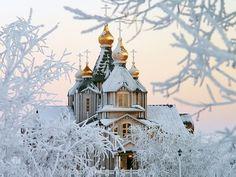 Рождественский сочельник и Рождество Христово. Ответы на вопросы | Православие и мир