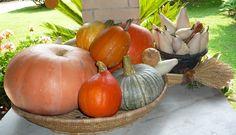 Raccolto d'autunno