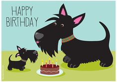 Birthday Scottish Terrier, google