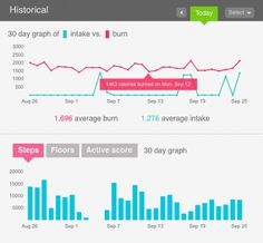 Online Tracking of Fitbit for calories burned and taken in