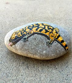 Gila Monster Rock Painting, Gila Monster Painting, Lizard Art, Hand Painted Lizard, Stone Painting, Garden Art, For Him, For Her, MelidasArt by MelidasArt on Etsy https://www.etsy.com/listing/472790795/gila-monster-rock-painting-gila-monster