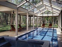 Natural setting in Tampa - Screened Pool enclosure