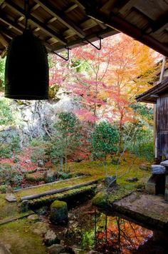 Saimyō-ji Temple, Kyoto, Japan by Clione Limacina