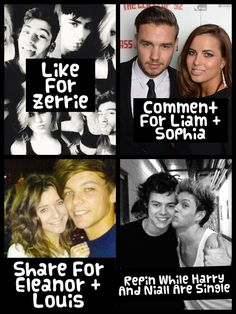 All of the above!!!!! If you really love the boys you would support them no matter who they're dating!!! I sure do!!! If Sophia, Perrie, Kendall, Barbara, and Eleanor make them happy then I will be happy!!! (Btw I LOVE El, Pezza, Dani, and Sophia!!)