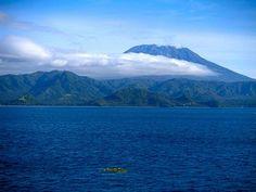 Gunung laut adalah sebuah gunung yang naik dari dasar laut yang tidak sampai naik hingga permukaan laut, dan dengan demikian bukanlah juga sebuah pulau.