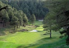 Forest Highlands is Flagstaff's premiere gated golf community, and summer home to many of my Phoenix Clients.