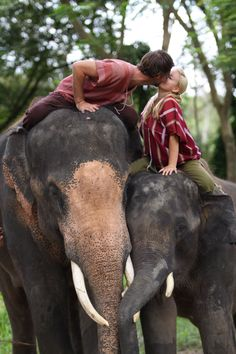 Patara Elephant Farm- Chiang Mai, Thailand  Such a cute picture