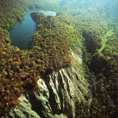 biogradska gora national park - Google Search