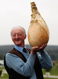 "Giant Onion!  I had no idea an onion could get so big -- my question is, of course:  ""How does it taste?"""
