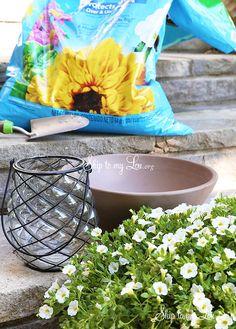 easy outdoor centerpiece supplies
