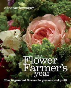 flower garden care The Flower Farmers Year: How to Grow Cut Flowers for Pleasure and Profit Growing Flowers, Cut Flowers, Bamboo Trellis, Cut Flower Garden, Flower Gardening, Gardening Tips, Flower Farmer, Home Landscaping, Garden Care