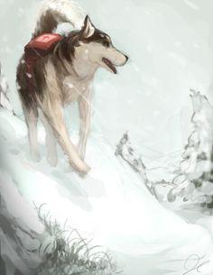 Rescue Husky
