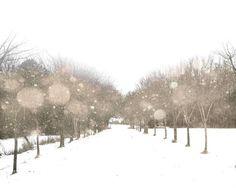 winter storm...