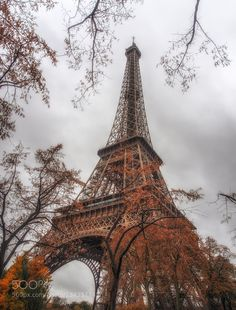 Popular on 500px : Autumn in Paris by KimAndelkovicPhotography