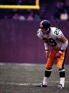 06e6d602a1f 43 best my steelers images on Pinterest