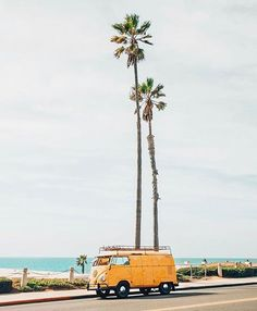 Beach cruiser 🌴 photo by via Beach Aesthetic, Summer Aesthetic, Photo Wall Collage, Picture Wall, Aesthetic Iphone Wallpaper, Aesthetic Wallpapers, Beach Rides, Vanz, Mellow Yellow