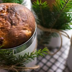 Panettone Muffin, Breakfast, Food, Honey, Vegetarian Cooking, Greedy People, Thermomix, Meal, Eten