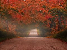 Autumn Drive ~ Explored by KPEP ... Connect Interactive LLC