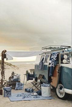 Sea life, free camping, love vw