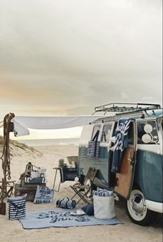 Sea life, free camping, love vw