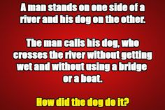 Brain teasers for kids with answers require a little extra brain power to solve and are a good way to exercise your brain. Five men were eating apples. Mystery Riddles, Brain Teasers Riddles, Brain Teasers With Answers, Brain Teasers For Kids, Riddles With Answers, Funny Cartoon Memes, Funny Riddles, Riddle Puzzles, Puzzles For Kids